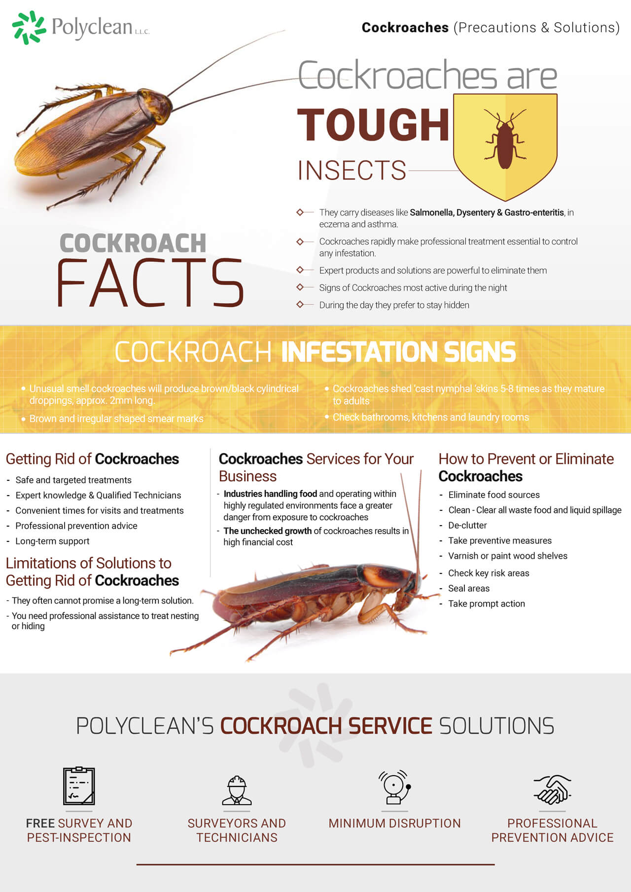 crawling-insects-cockroaches-2